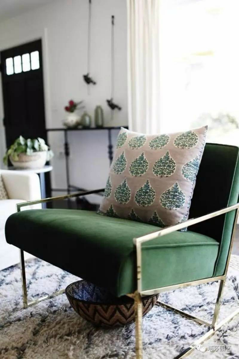 Pantone's Kale: A Top Trendy Color For Modern Chairs modern chairs Pantone's Kale: A Top Trendy Color For Modern Chairs image