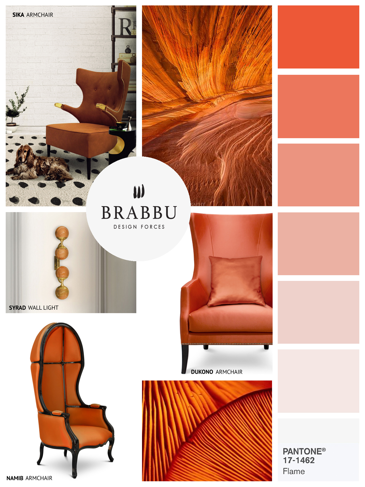 10 Amazing Colorful Chairs for A Chic Home 10 Amazing Colorful Chairs for A Chic Home moodboard by brabbu 8 HR