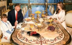 Luxury Dining Chairs From Donald Trump´s NYC Penthouse dining chairs Luxury Dining Chairs From Donald Trump´s NYC Penthouse Luxury Dining Chairs From Donald Trump  s NYC Penthouse 3 240x150