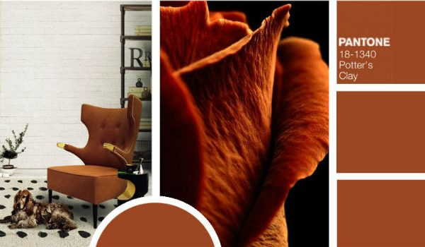 Trendies Modern Chairs For Fall According To Pantone Color Report