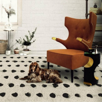 incredible modern chairs Rugs meet Incredible Modern Chairs 350